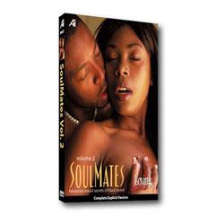 Loving Sex Soulmates Vol. 2: Sexual Secrets of Black Lovers