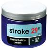 Stroke 29