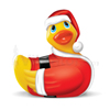I Rub My Duckie Holiday Duckie